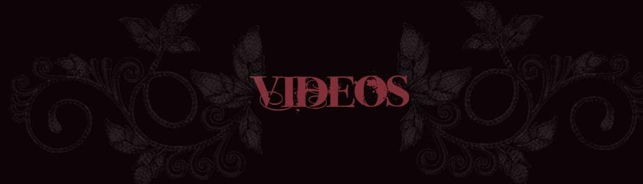 videos_header